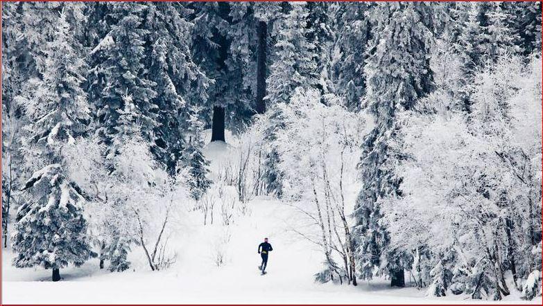 Truger med Ingrid Kristiansen i skogen
