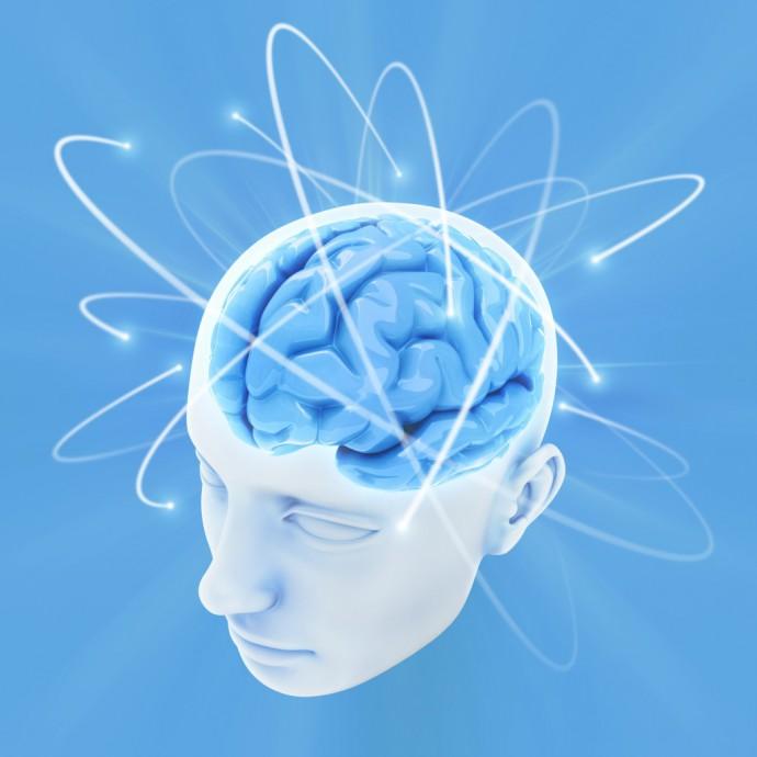 Hjernen-1024x1024